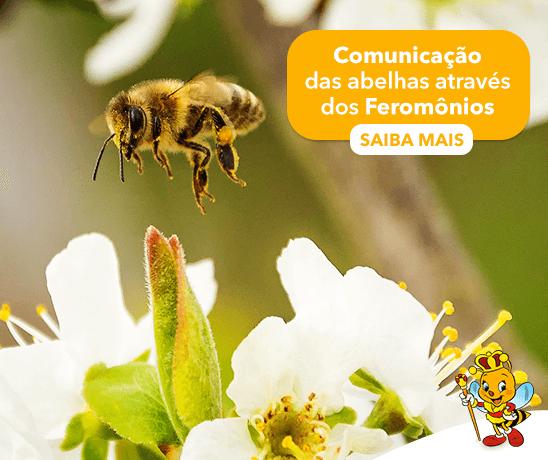 comunicacao-das-abelhas-atraves-dos-feromonios