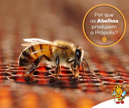 por-que-as-abelhas-produzem-a-propolis